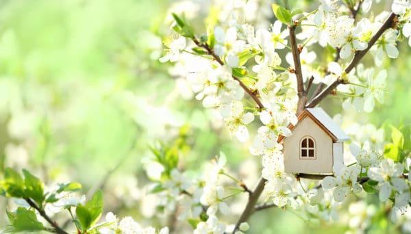 Houten huisje in lente als symbool voor seizoensverhuur - Chateau Residenties